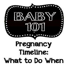 Live and Learn: Baby 101 Series: Pregnancy Timeline - What To Do When