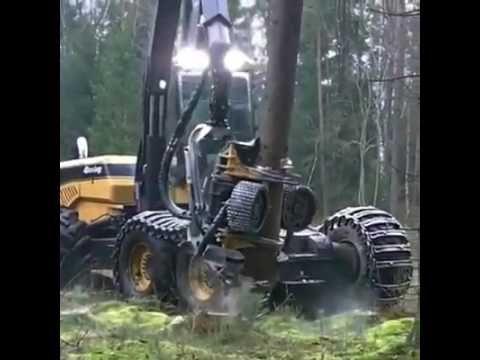Wood cutter machine cutting entire forest!!!