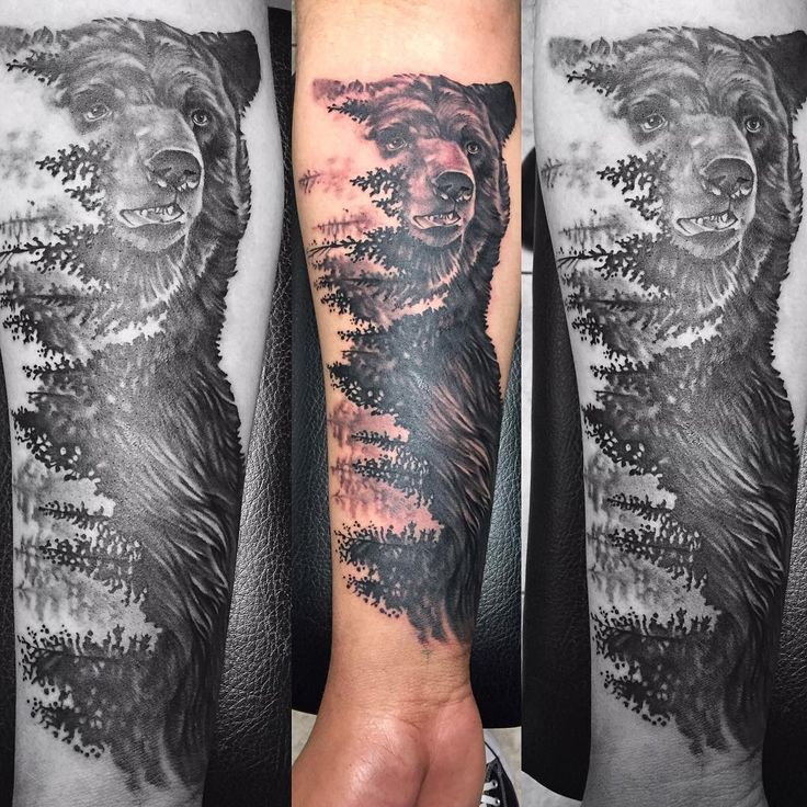 "Nature, Bear and Pine Trees Tattoo ""Tattoo'd this photo that was done by @artworkbylie hope I did it justice! Thank you @kll87 for the fun idea and making the trip down! Done with…"""