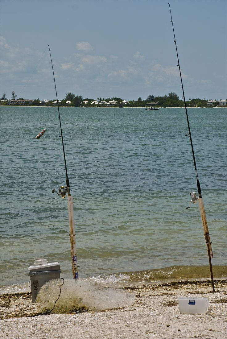 17 best images about things to do in ft myers beach on for Fishing charter fort myers beach fl
