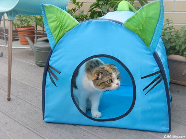 Buy or DIY your cat's dream home. Meow!