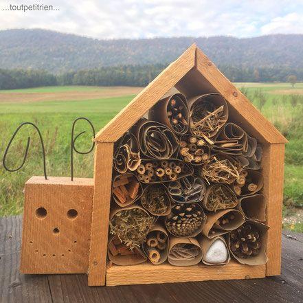 Le Verger Fleury - Site de toutpetitrien ! - Atelier découverte pour les enfants, visite du monde des insectes utiles de nos jardins