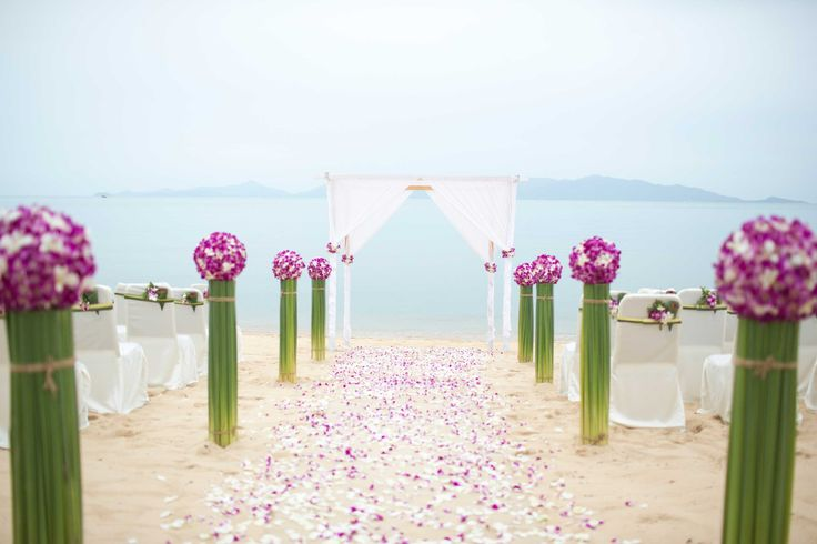 Wedding Aisles Gallery   Ideas for Wedding Aisles - Pink Frosting Weddings http://www.pinkfrosting.com.au/article/wedding-aisles-gallery