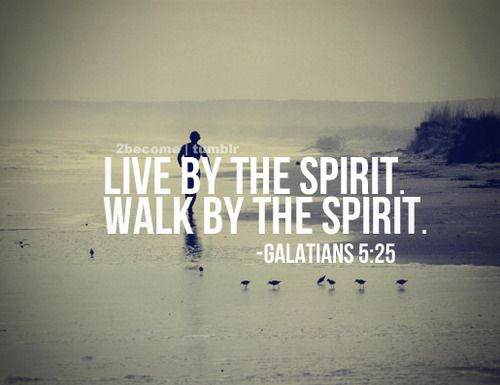 Galatians 5:25 ~ Live by the spirit ~  Walk by the spirit