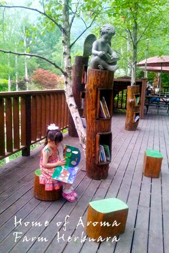 Book tree, Kids library , Farm Herbnara, Korea