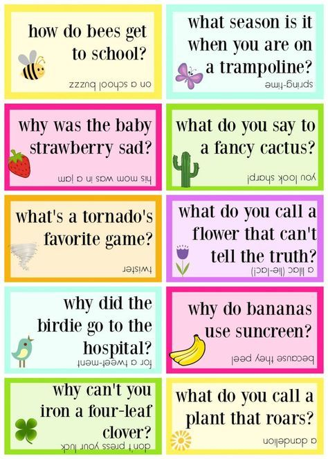 Lunch Box Jokes for Spring, FREE PRINTABLE   kids stuff   Funny