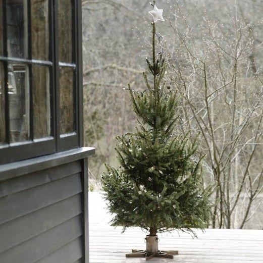 Libra Christmas Tree Stand