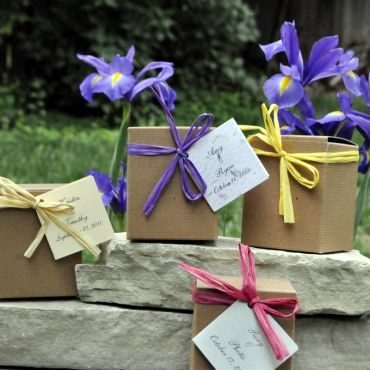 SALE 20% OFF Beautiful Iris Flower Bulb Wedding Favors- almost gone, ORDER for your fall wedding