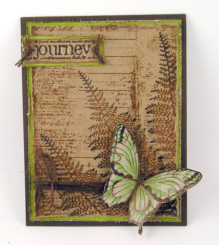 fern and butterfly