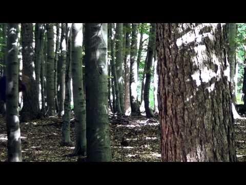 Anthony Hamilton & Elayna Boynton - Freedom - YouTube
