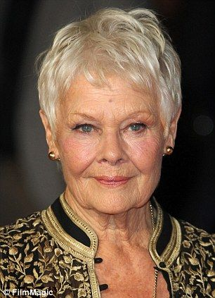 short and long hair styles best 25 judi dench hairstyle ideas on judi 5996 | 42c95945a9f1edd5996a699322930477 judi dench london film festival