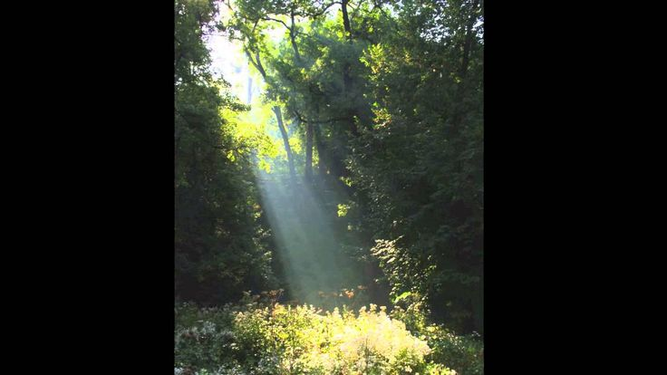 The Road to Lisdoonvarna (Lisdoonvarna Jig) - Soprano/Descant Recorder