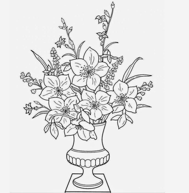 Flower Vase Drawing With Colour Vase Pinterest Coloring Pages