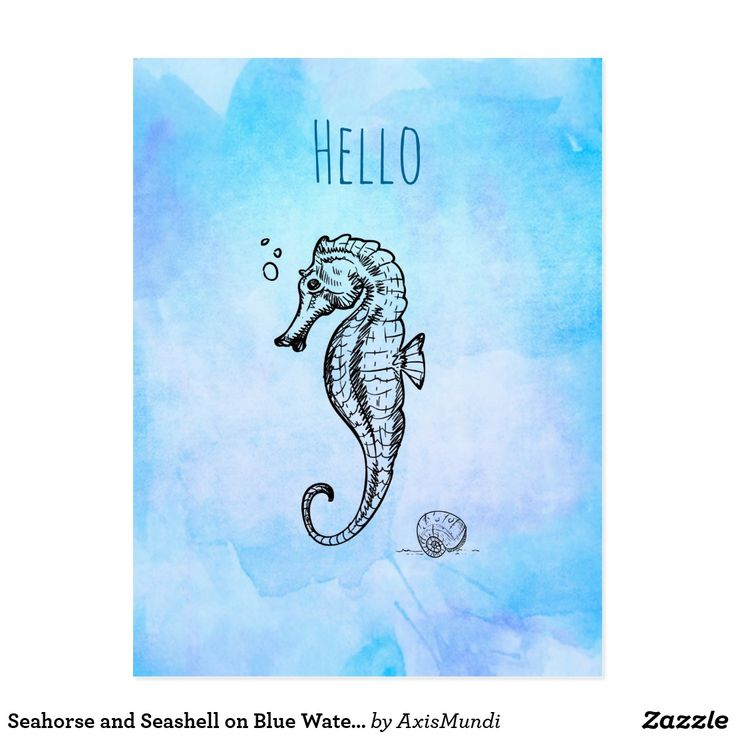 Seahorse and Seashell on Blue Watercolor Hello Postcard