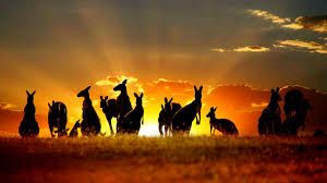 awesome aussie sunset