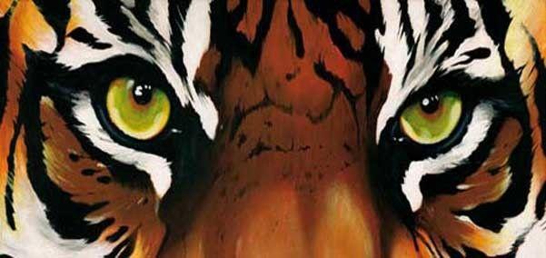 tijger ogen - Google zoeken