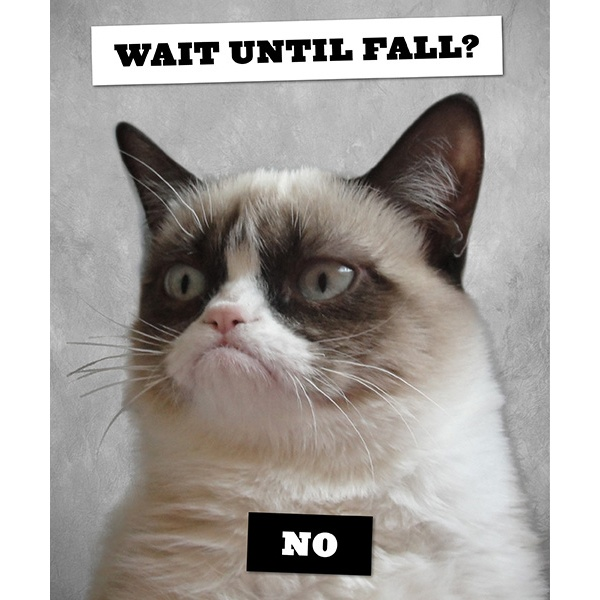 Grumpy Cat: A Grumpy Book will be on sale July 23! We're taking preorders now at ChronicleBooks.com, so reserve your copy today!