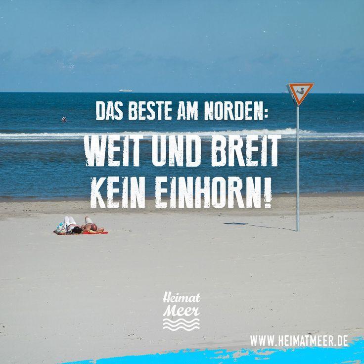 Das Beste am Norden: Weit und breit kein Einhorn! >>
