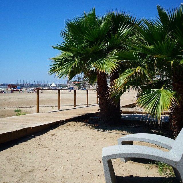 Vamos a la #playa oh oh ohh  #Terrers #palmeras #peseo #mar #calor #Levante #Benicàssim #Benicassim #Benicasim #Benicassimparaiso #paraiso #paradise #mediterraneo #instagram #instabeach #beach #verano #summer #sand #palm #spain #castellon #benifornia