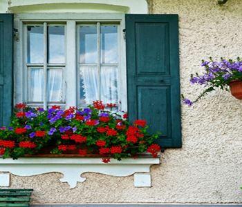 Pencere önü çiçek dekorasyonu ile evinize sıcak ve sevimli bir görünüm kazandırabilirsiniz.
