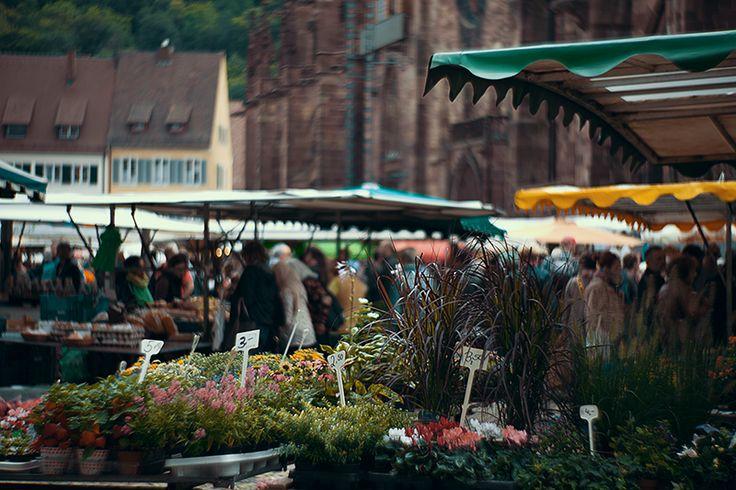 Münstermarkt Freiburg