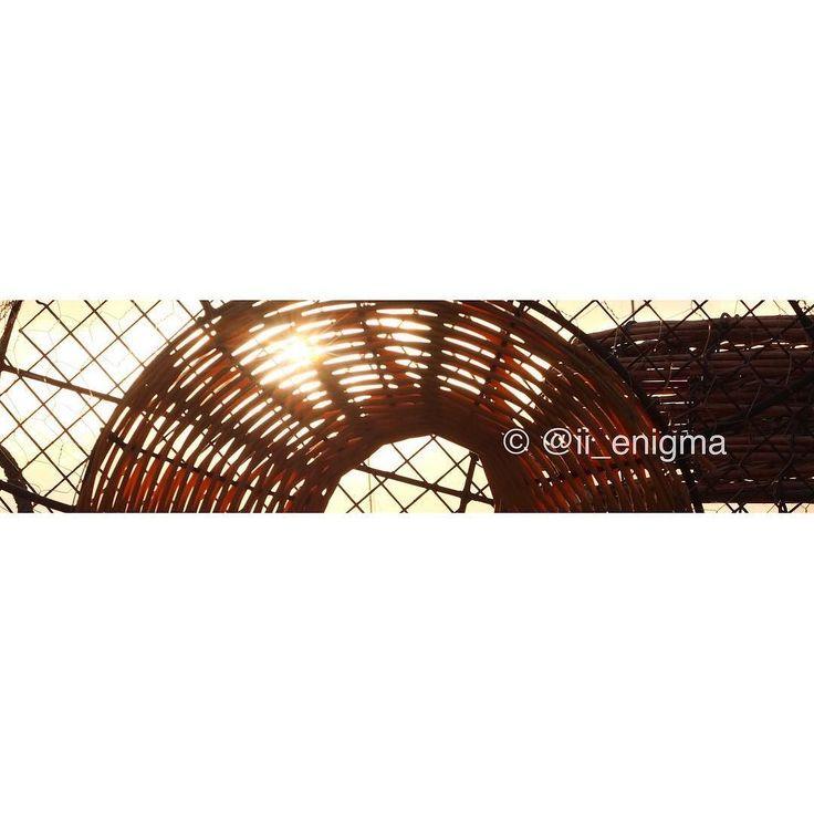 Through the craypot #Australia @nikon_australia @nikonphoto_ #mynikonlife #scenery #IAmNikon #ausfeels #aussie_captures #ICU_aussies #placestovisit_victoria #ozexplore #MelbOnPix  #Nikon_Owners #SeeAustralia @Australia #IG_Australia_ #AustraliaGram #WOW_Australia #IG_Australia__  #IG_Australia #ExploreAustralia #visitvictoria #aussiephotos @briskoutdoors #discoverVictoria #dyobmelbourne @great_captures_australia #Great_Captures_Australia #escapeandexplore #greatoceanroad #ILoveAustralia No…