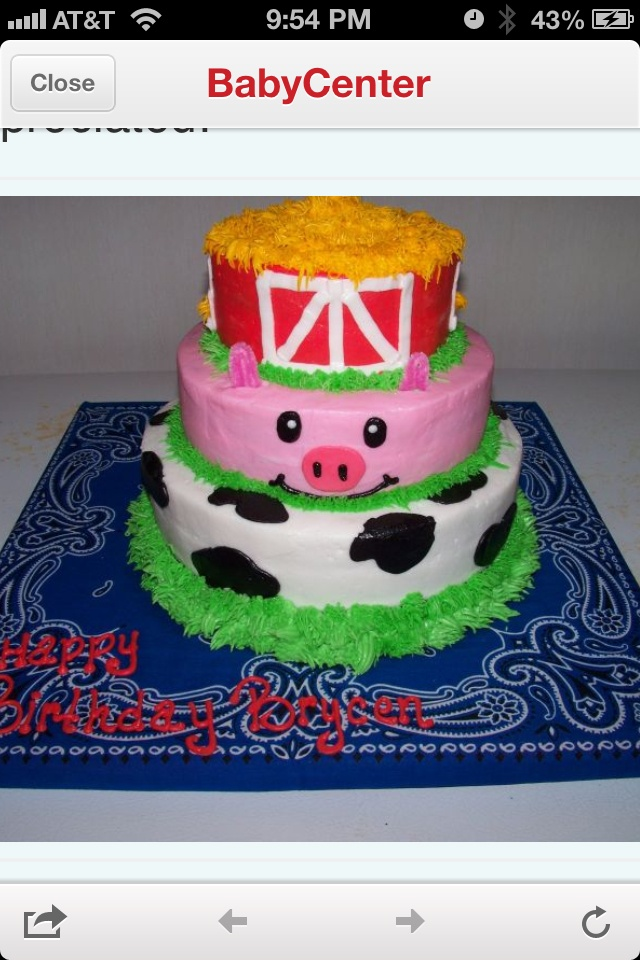 Stormie Birthday Cake