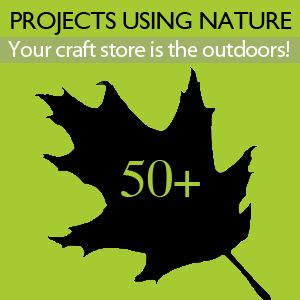 50+ DIY and Craft Nature Projects using the outdoors