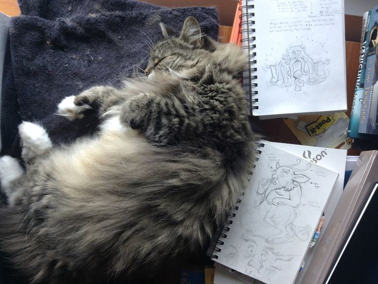 The main fixture in the studio is Griffin. So, here he is, resting upon his makeshift bed amidst my stacks of sketchbooks.
