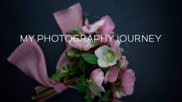My Photography Journey - In this week's video, I share with you my photography journey capturing flowers. | flowerona TV
