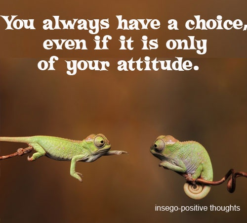 you always have a choice...: Worth Reading, Happy Thoughts, Super Duper, Choo Wise, Choose Wise