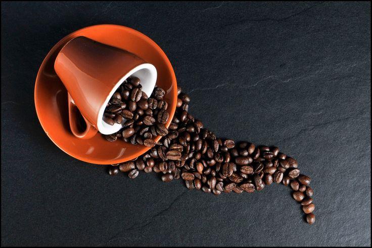 Coffee Bean River