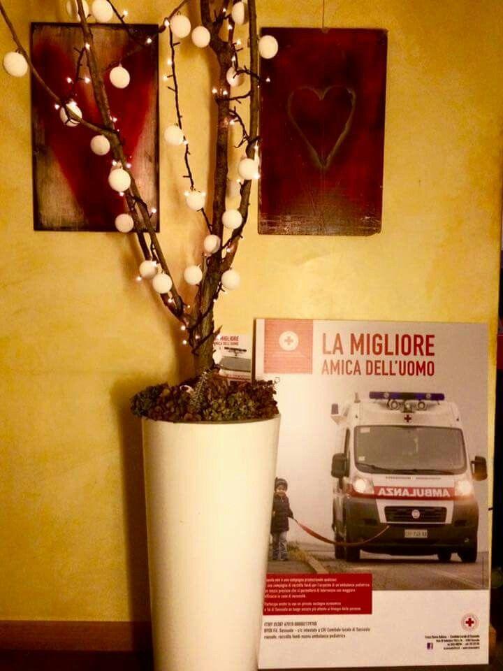 La migliore amica dell'uomo - campagna raccolta fondi 2015 promossa dalla CRI di Sassuolo per l'acquisto di un'ambulanza pediatrica. Foto di Luigi Ottani Grafica Morena Luppi