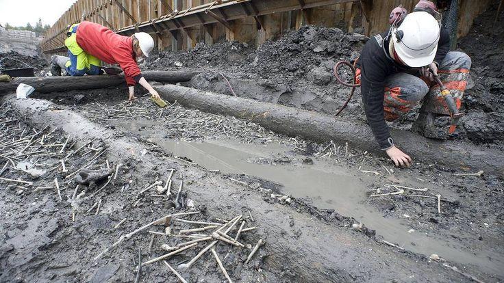 Fant 1100 krittpiper fra 1600-tallet - osloby