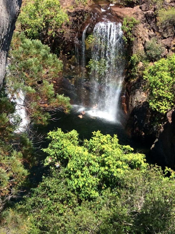 Wallaroo Tours (Darwin, Australia): Address, Phone Number, Tickets & Tours, Attraction Reviews - TripAdvisor