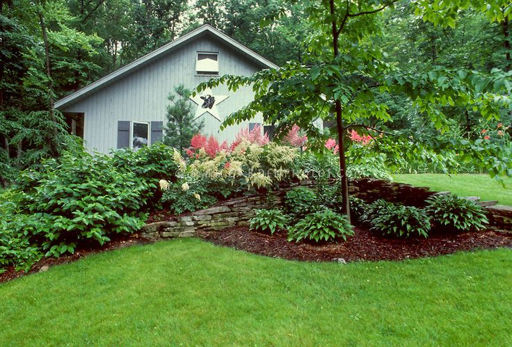 Landscaping With Hostas And Flowers Mulched Tidy Garden