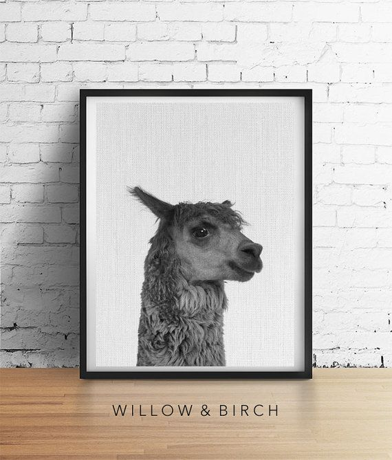 ALPACA Llama Printable Art Baby Animal by WillowandBirchPrints
