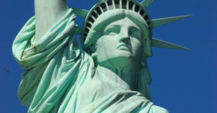 Diferencias entre una visa IR-1 y una IR-2. La principal diferencia entre las visas de inmigrantes IR-1 e IR-2 es para quiénes son; una visa IR-1 es para el cónyuge de un ciudadano de los Estados Unidos, mientras que la visa IR-2 es para el hijo soltero de un ciudadano de los EE.UU. que aún no ha cumplido los 21 años. Las comisiones y formularios de solicitud son idénticos, y ambas se ...
