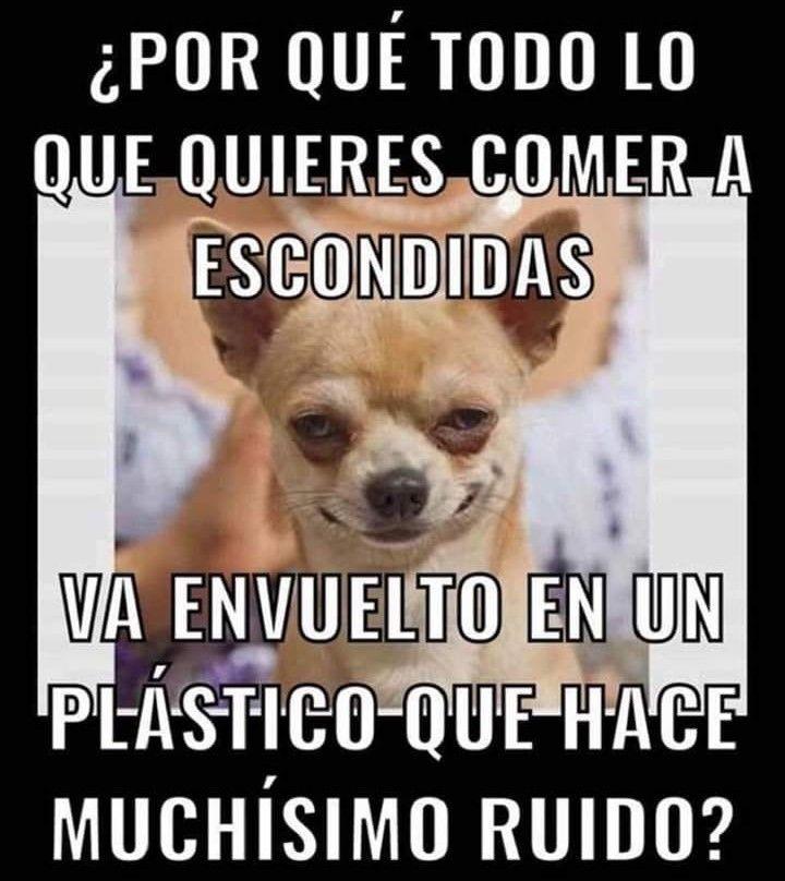 Pin By Daniel Carrasco On Humor Memes Y Mas Funny Memes Memes Humor