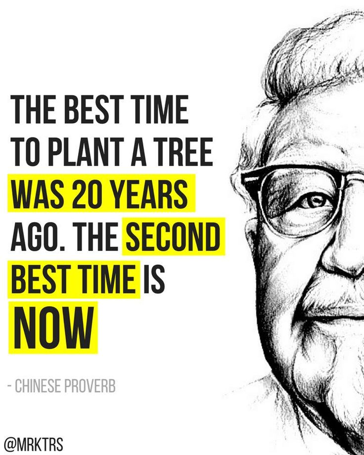 Chinese Proverb 🗣 The best time to plant a tree…