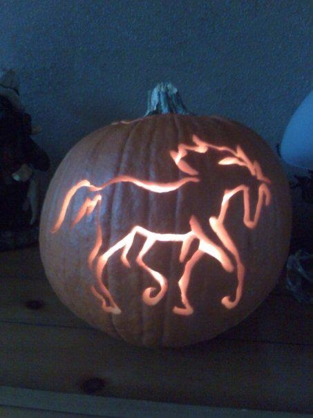 Have you ever carved a horsey-themed pumpkin? (This horse-o-lantern is from our partners at United States Equestrian Federation (USEF) courtesy of their fan Stephany Steinert)