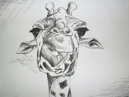 Image result for рисунок жирафа