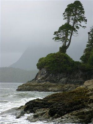 Tofino, Long Beach Natl Park, west coast of Vancouver Island