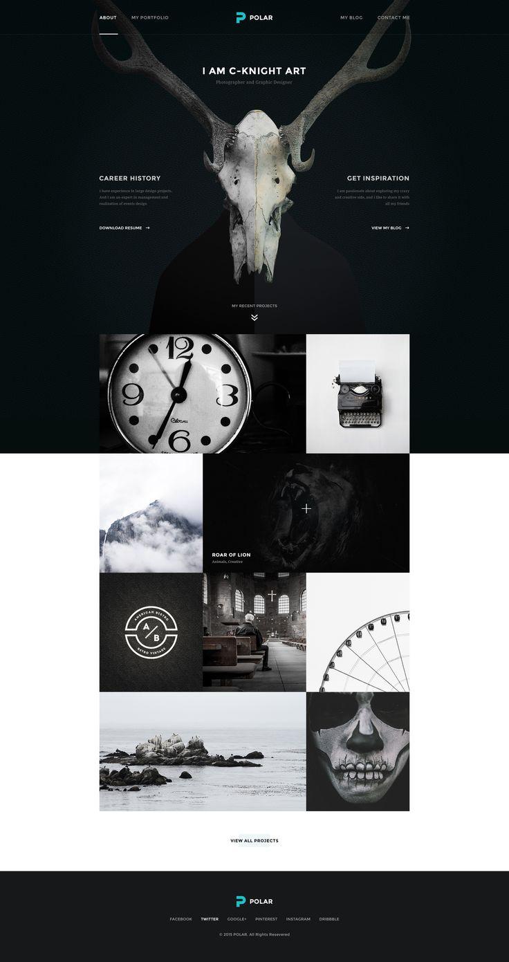 Polar   home portfolio