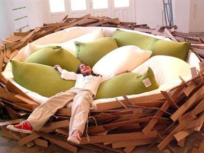 Nest sleepers wanting their very own nest? Looks like a very comfy bed.