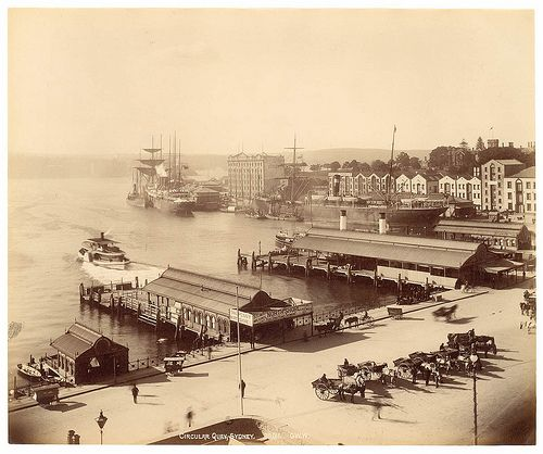 Circular Quay, Sydney from Fred Hardie - Photographs of Sydney, Newcastle, New South Wales and Aboriginals for George Washington Wilson Co., 1892-1893