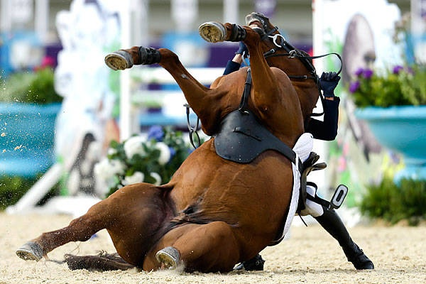 Not a good show:  South Korea's Hwang Woojin and his horse Shearwater Oscar fall after the horse bucked after the starting bell sounded for their run in the equestrian show jumping stage of the men's modern pentathlon