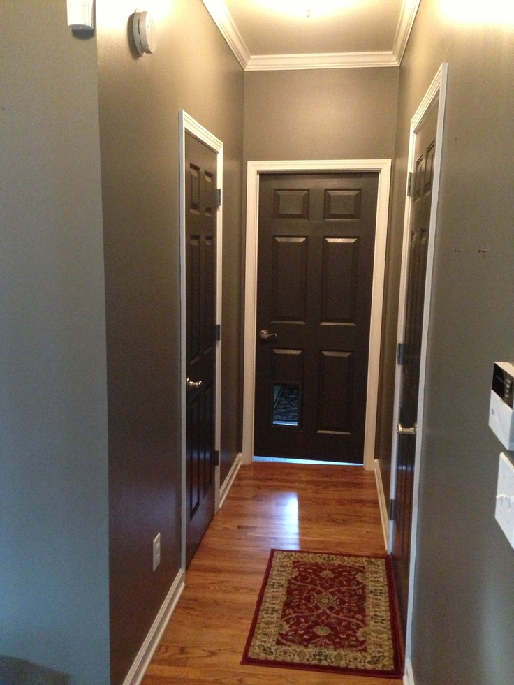 Grey walls and black/brown doors. Crisp white trim
