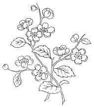 ::ARTESANATO VIRTUAL - Tecnicas de Artesanato | Dicas para Artesanato | Passo a Passo:: -20 pages of flower templates