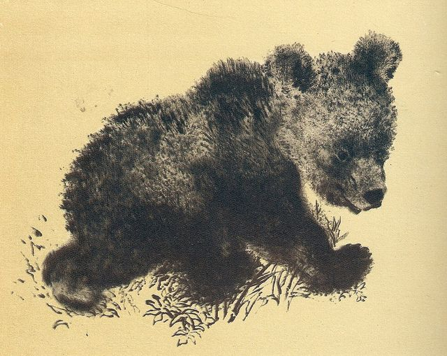 Медвежонок 1954 Евгений Чарушин | Flickr - Photo Sharing!